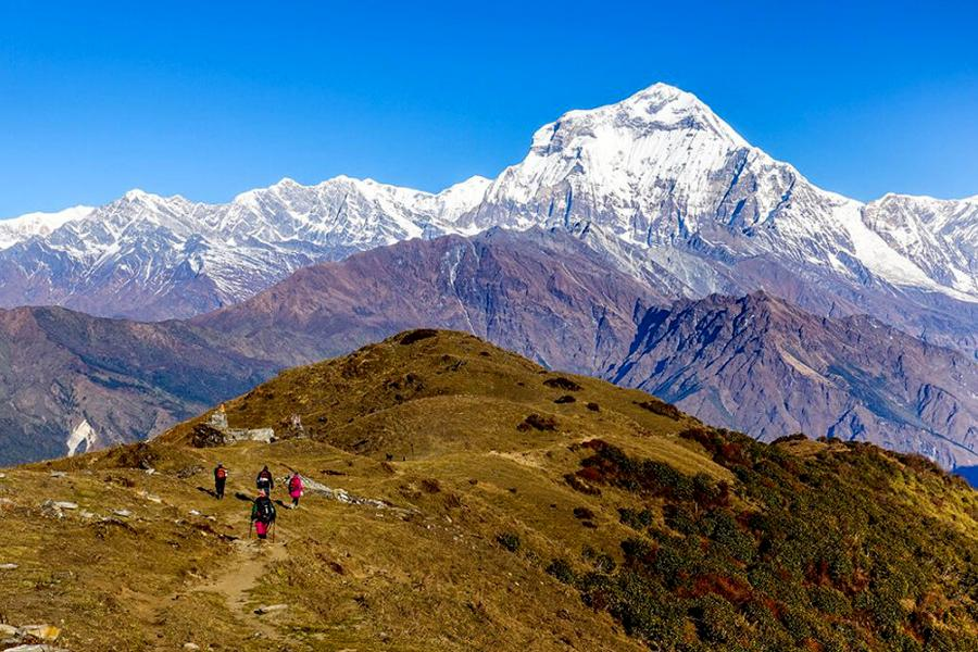 Khopra Ridge Trek of the Annapurna region