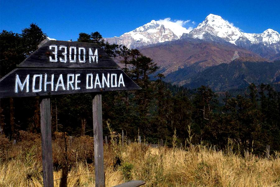 Mohare Danda Trek in the Annapurna Region