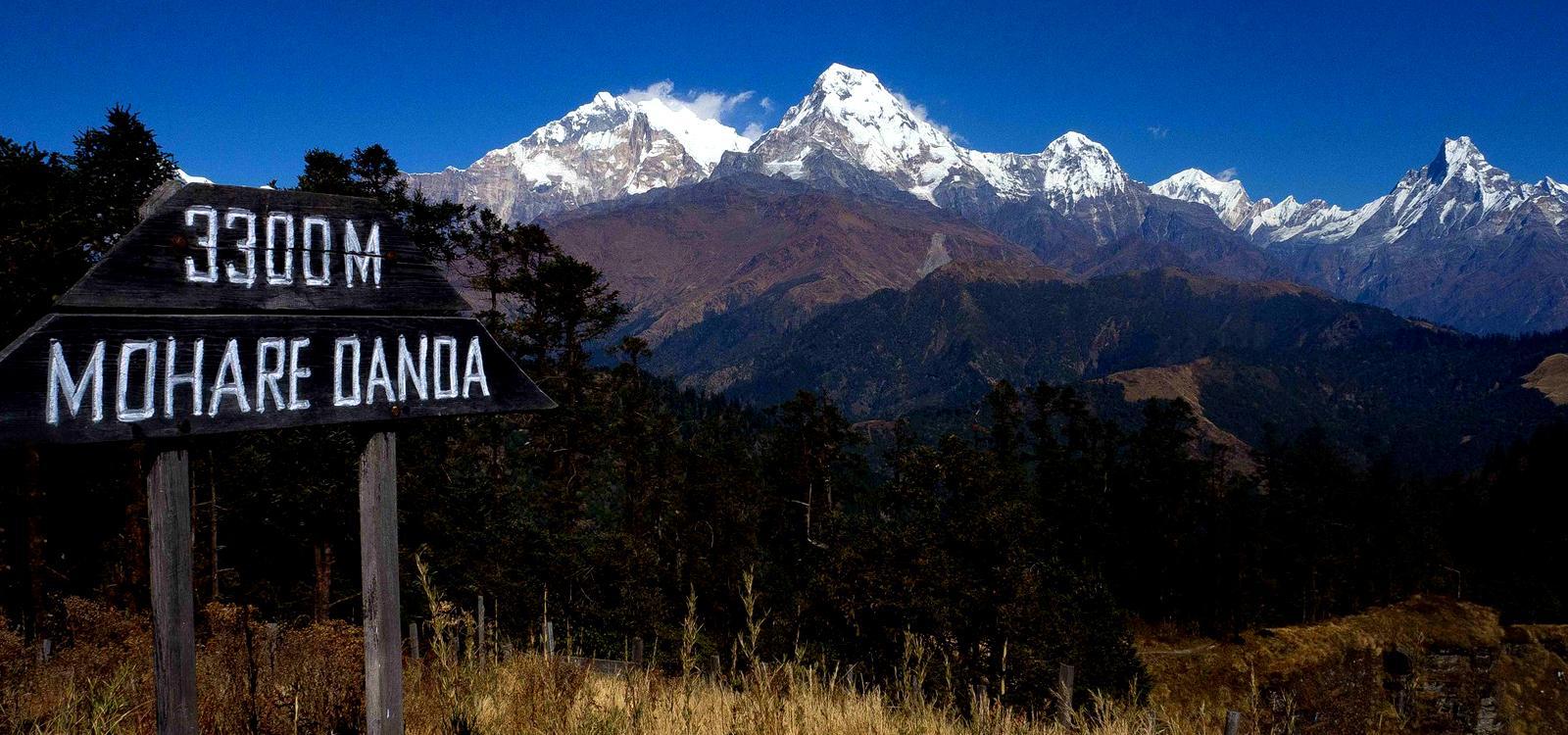 Mohare Danda Trek in the Annapurna Region