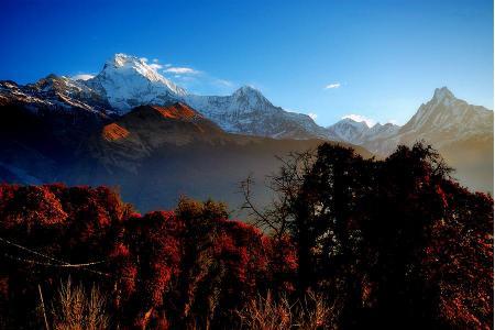 Ghorepani Poon Hill Trek | Annapurna Region